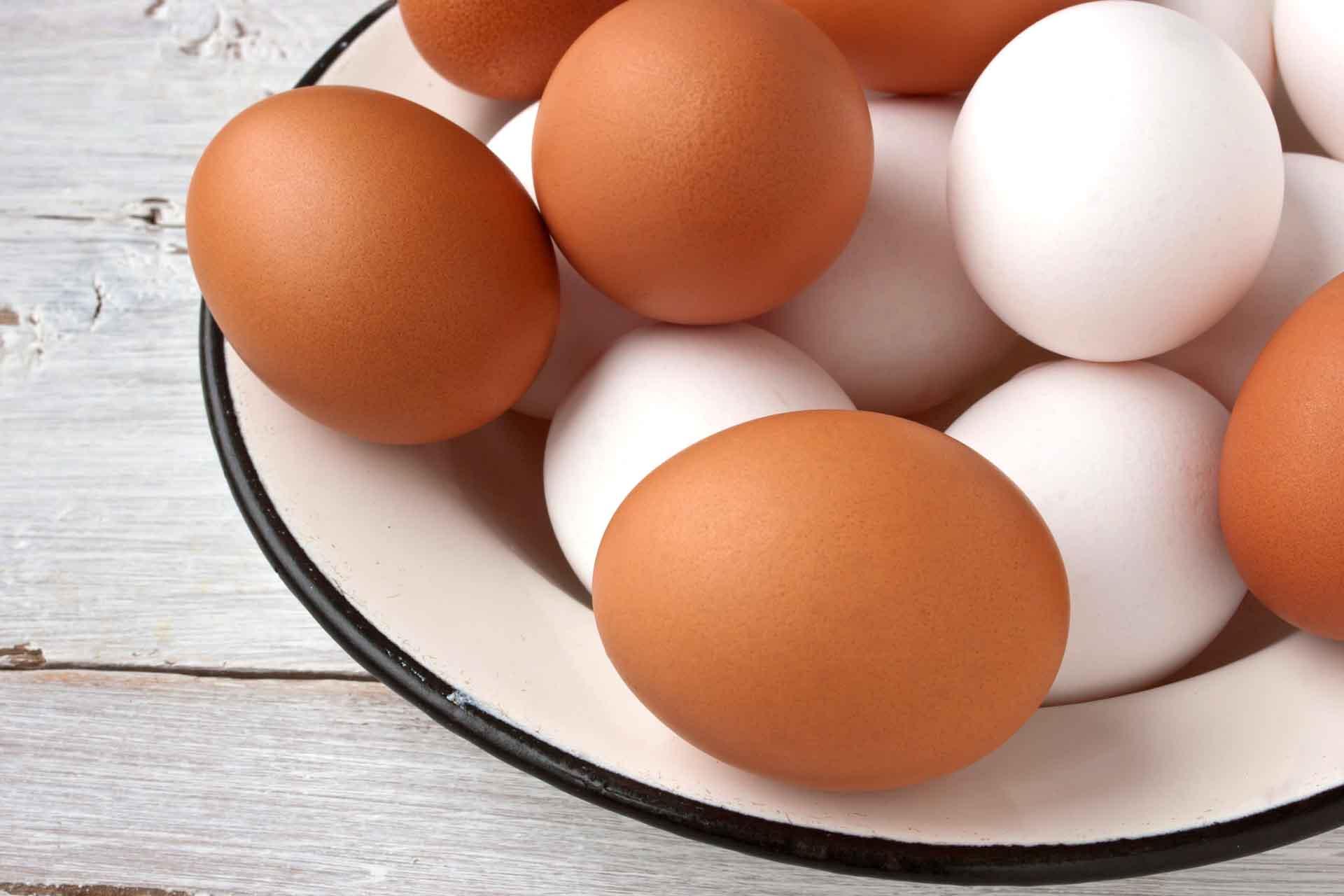 Eggs elektroanlagen