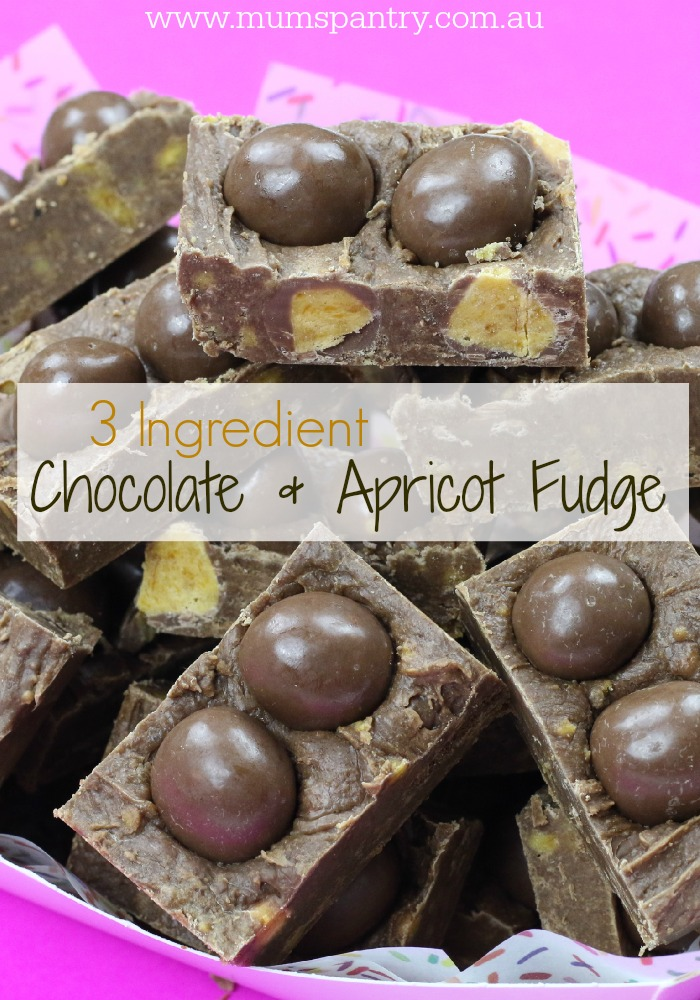 3 ingredient chocolate and apricot fudge